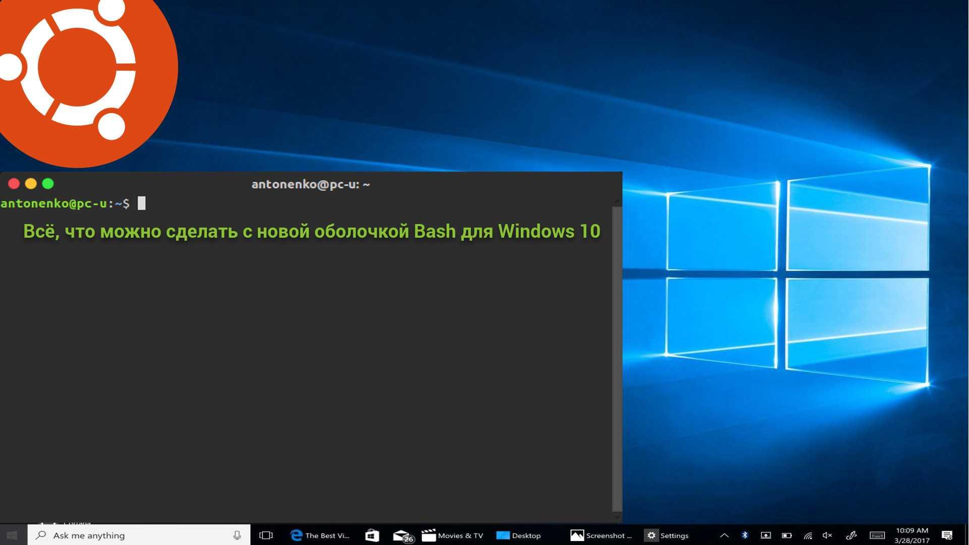 Всё, что можно сделать с новой оболочкой Bash для Windows 10